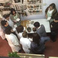 curso de Dorado, organizado por la Asociación de vecinos y comerciantes de La Falperra